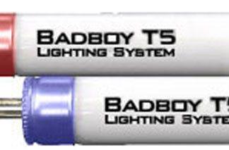 BADBOY HO Triphosphor Lamps